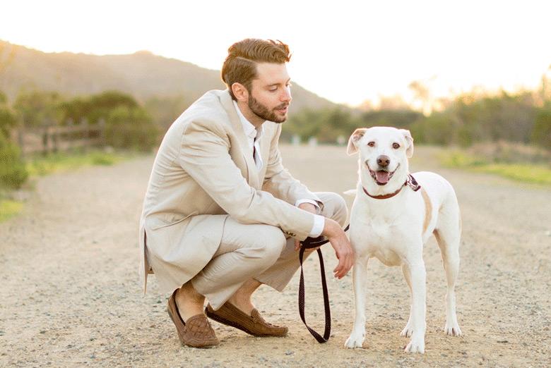 doggy bag per le nozze